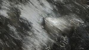 Body / Stone / Water I, 2010